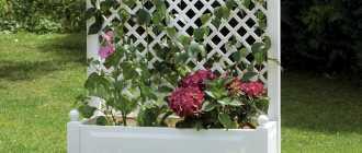 Вазоны для цветов: уличные, своими руками