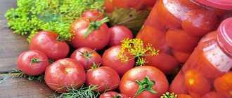 Рецепты розовых помидоров на зиму