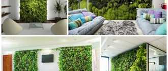 Какие растения выбрать для вертикального озеленения