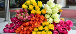 Кенийская роза: описание и фото